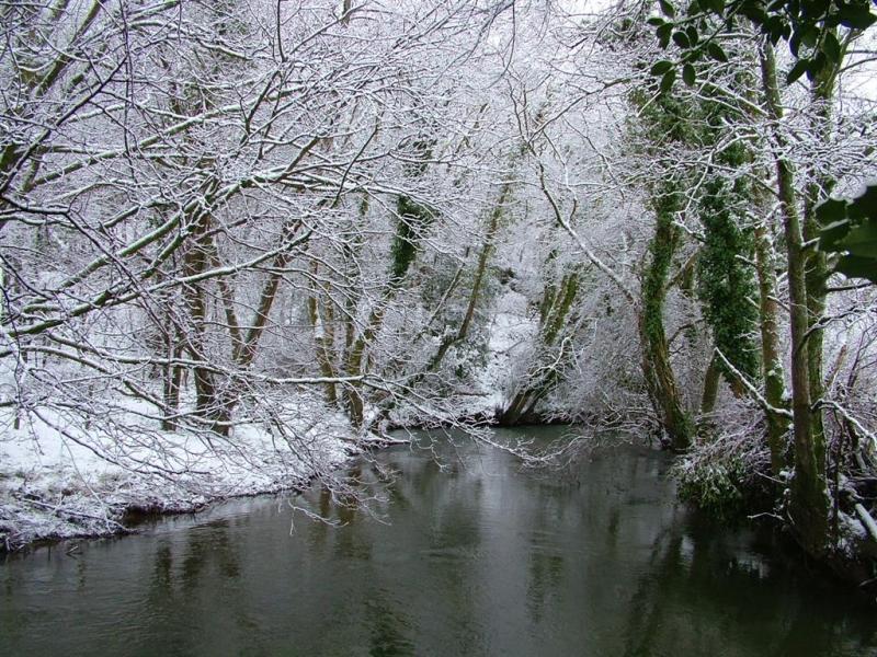 snowy-january-richard-argyle-large