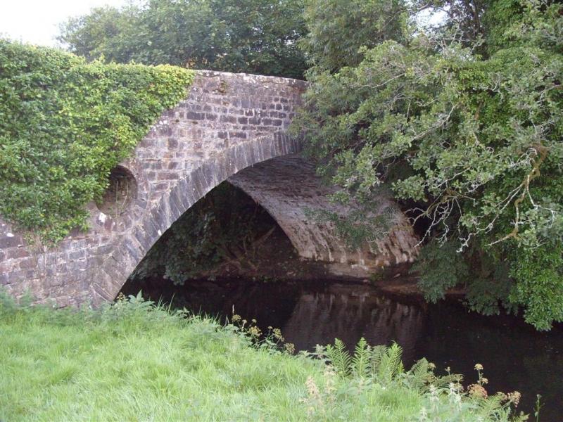 taf-bridge-marion-davies-large
