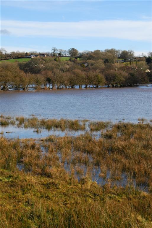 river-taf-floods-01