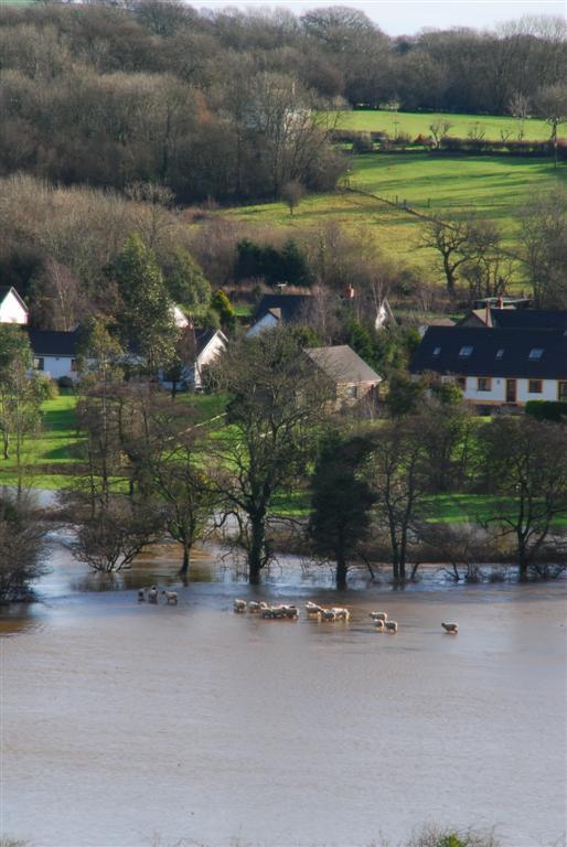 river-taf-floods-02
