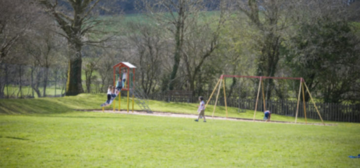 Be Part Of Our Park – Playing Field Looking For New Trustees